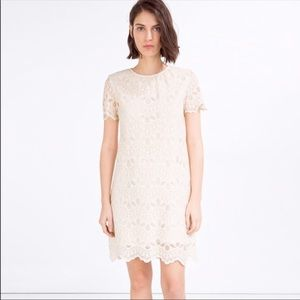 ZARA Lace Dress NWOT